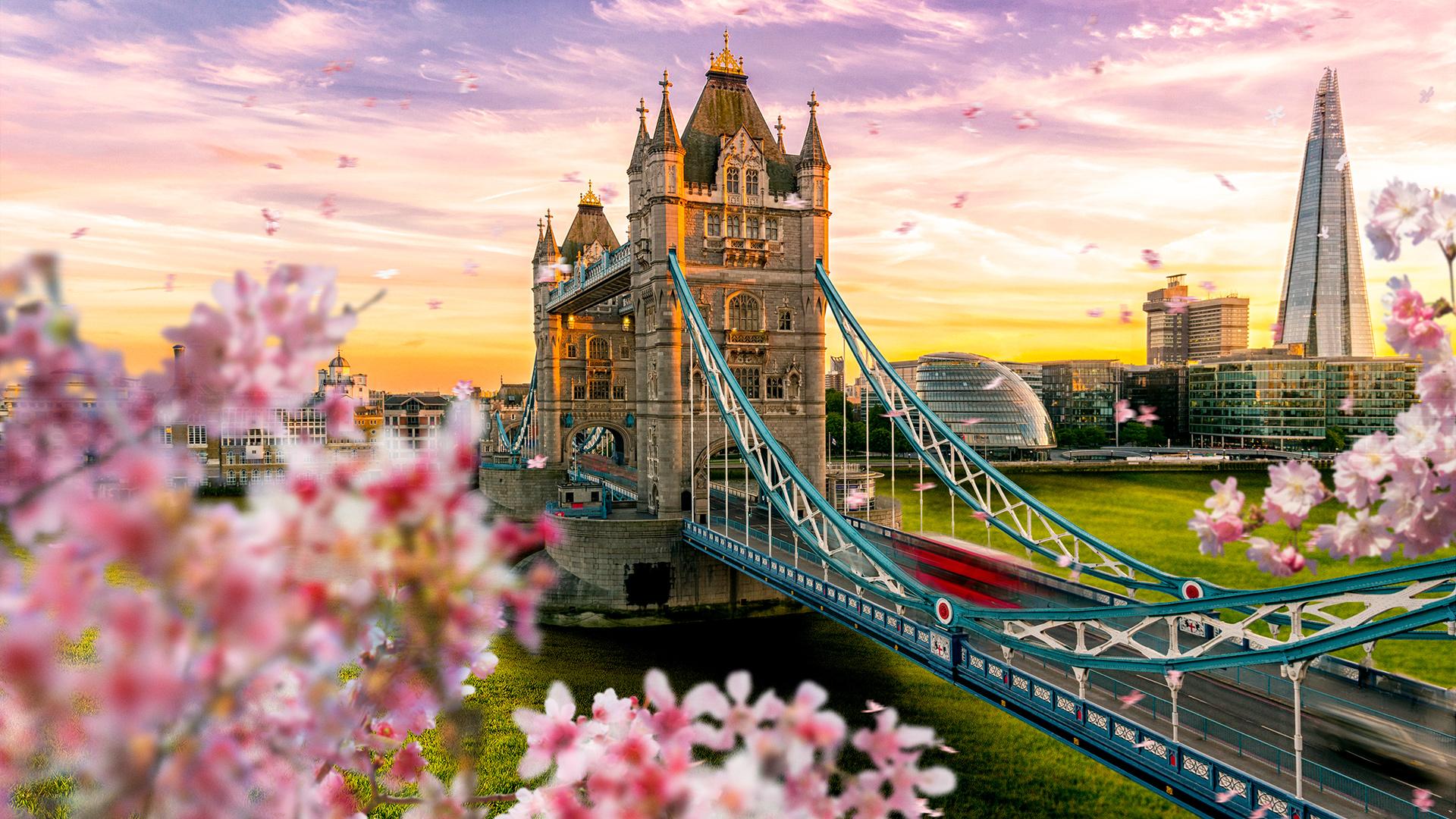 London Eye - England - World for Travel